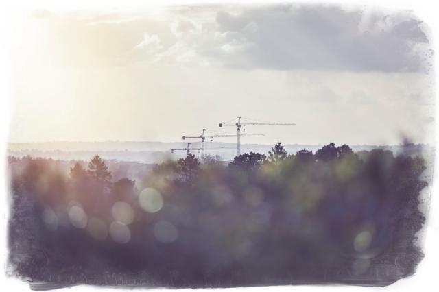 naas cranes